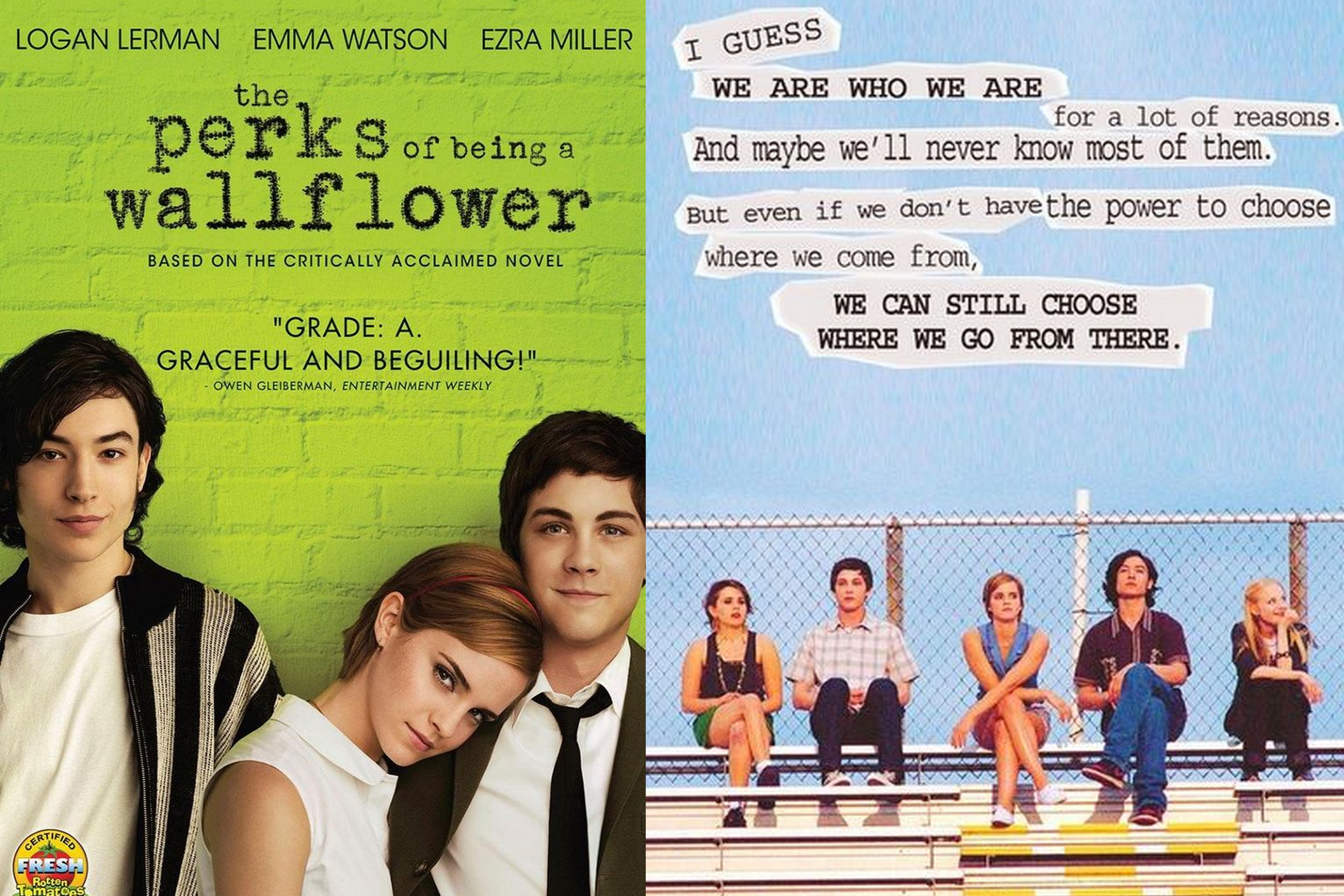 the perks of being a wallflower thesis Revealing charlie's post traumatic stress disorder through his behaviors in stephen chbosky's the perks of being a wallflower an undergraduate thesis.